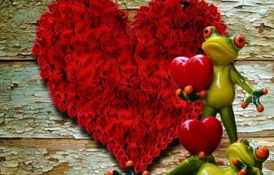 Romantické lupene ruží